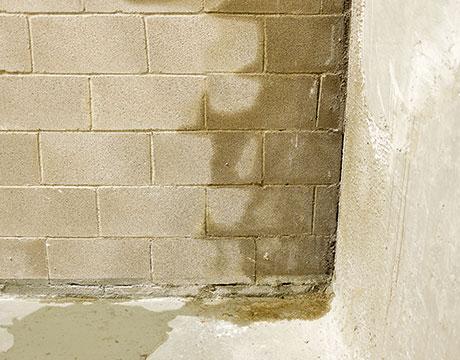 Nasse Wand im Keller